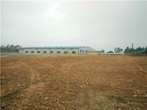 四塘(广西交通学院旁)50亩土地招租,可做驾校,可分租