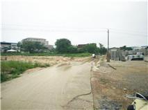 兴宁区邕武路林科院附近19亩平地招租,其中2亩地可建厂房