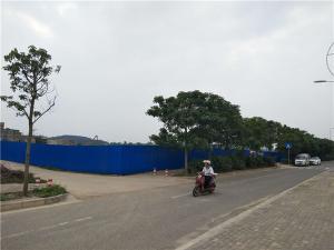 江南区三津大道马路边50亩大型集体用地招租,可整租、分租