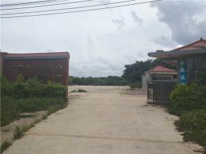兴宁区四塘蚕种厂内1600平米厂房、仓库,100亩晒场招租