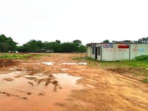 西乡塘石埠奶厂卫生院附近临路场地招租,可分租