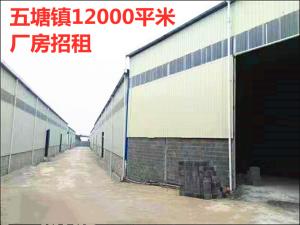 兴宁区五塘镇12000平米大型标准厂房和金桥市场附近3500平米厂房招租